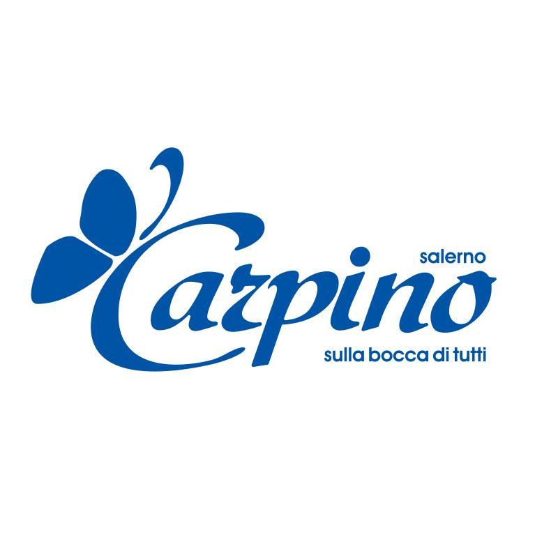 Carpino
